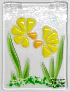 170317-6 4x3 Tiny daffodils x3d