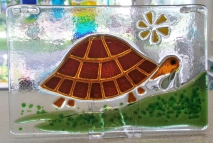 170816-1 6x4 Tortoise in browns a
